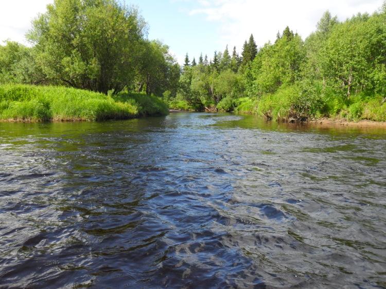 отдых и рыбалка в устье волги