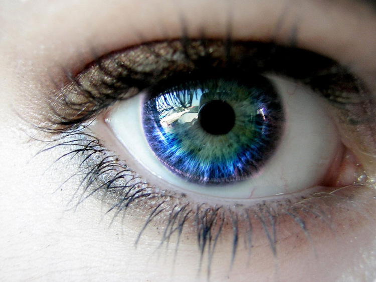 Blue green eyes