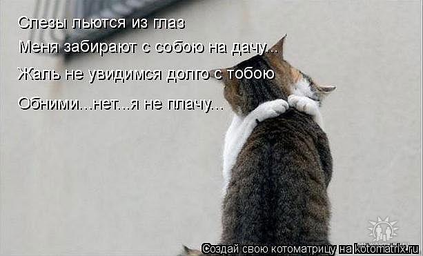 А мы астероиды пожирающие их вселенные))))) - mypage
