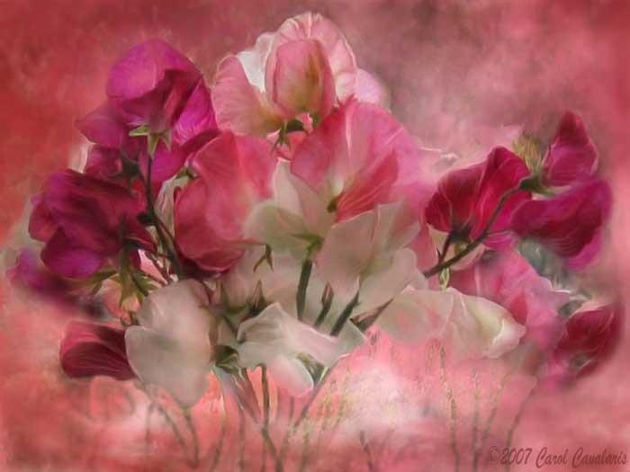 Потрясающие цветы