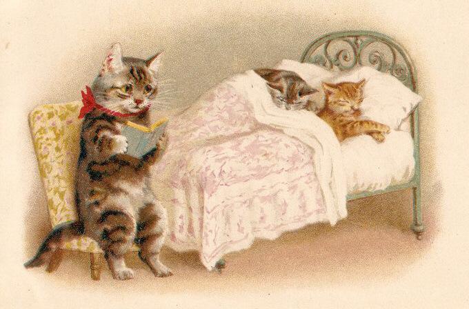 Фото и открытки коты