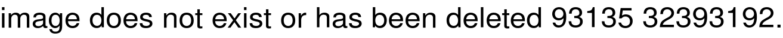 Юбка Вязанная Доставка